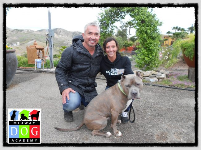 Megan and Cesar Millan